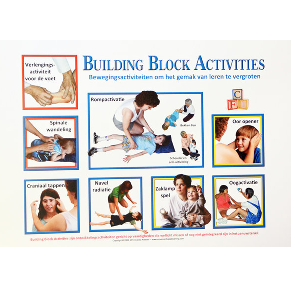 Poster Building Block Activities (44 Cm X 31 Cm) (Nederlands)