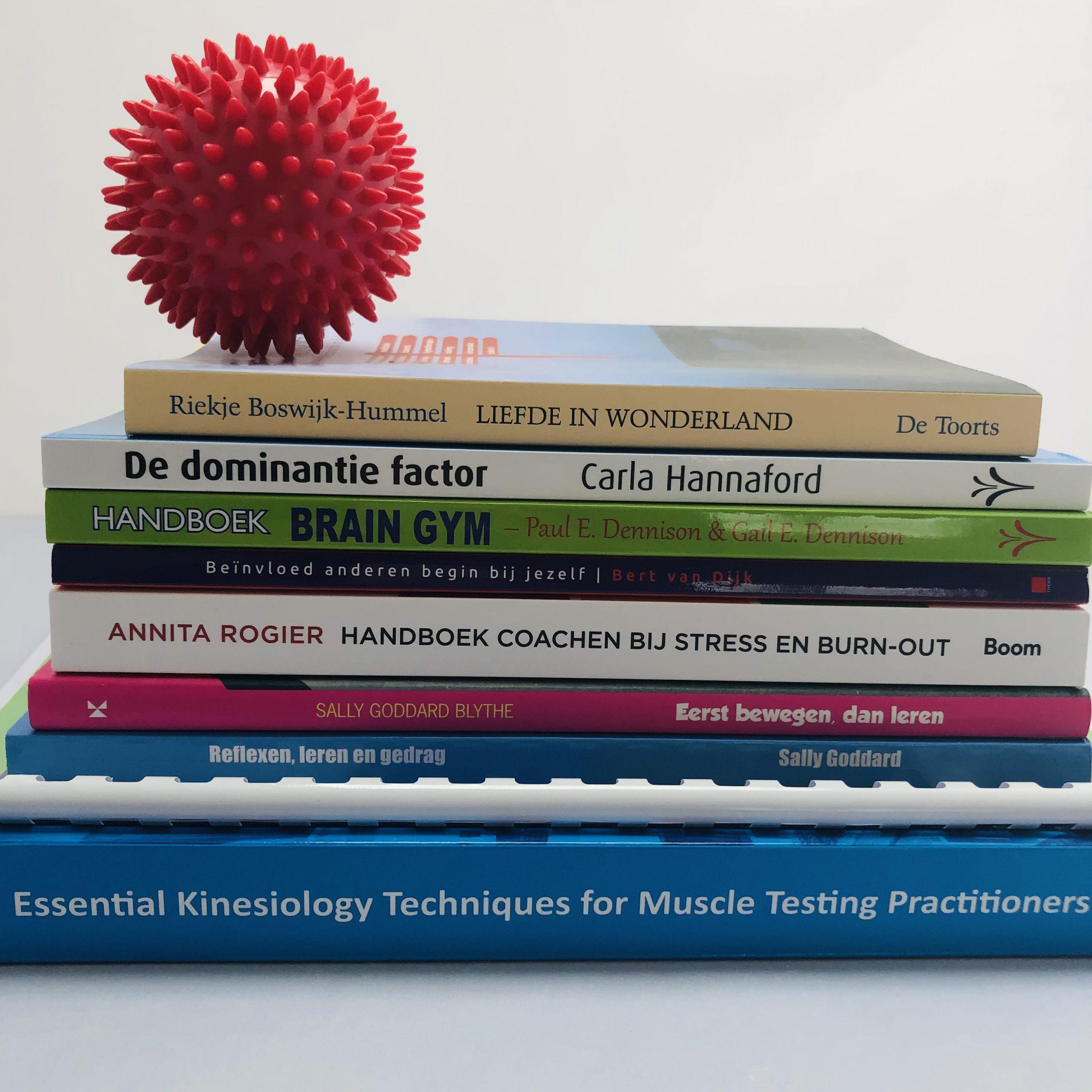 Boekenpakket Tweede Jaar Welkin Psychosomatisch Kinesioloog